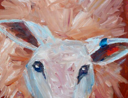 Blue Tagged Lamb
